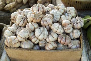 Pile of garlic bulbs in crate