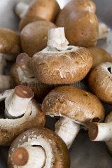 Heap of mushrooms