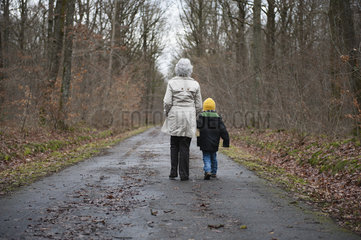 Grandmother and grandson walking in woods  holding hands  rear view