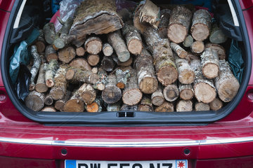 Car trunk with pile of firewood