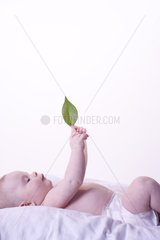 Baby lying on back  looking at leaf