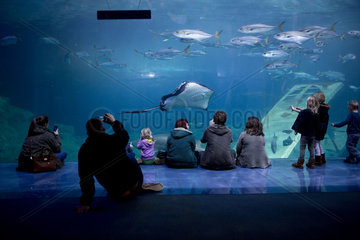 Aquarium Plymouth England