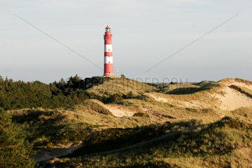 Nordseeinsel Amrum im Wattenmeer