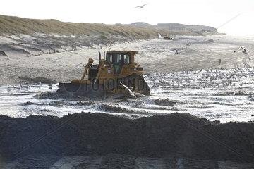 Sandkorn fuer Sandkorn ! Sandaufspuelung am Strand von Kampen auf Sylt
