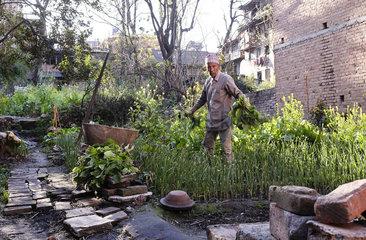 Gartenarbeit in Bhaktapur