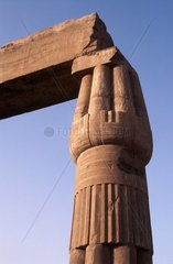 Africa  Egypt  Luxor  Luxor Temple  details of the colonnade of Amenhotep III