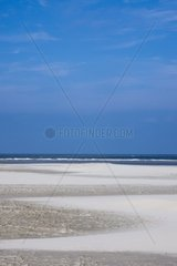 Am Nordseestrand  Insel Borkum  Nationalpark Niedersaechsisches Wattenmeer  UNESCO-Weltnaturerbe  Ostfriesland  Niedersachsen  Deutschland  Europa