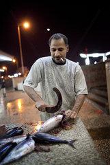 Fischmarkt in Aden