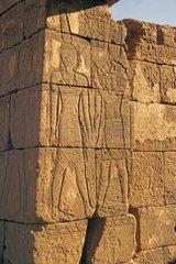 Sudan  archeological ssite of Naga