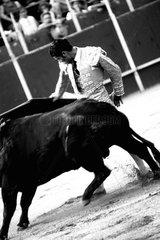 Stierkaempfer beim Kampf