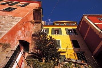Italy  Liguria  Camogli  caruggi
