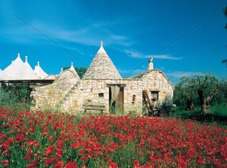 Italy  Apulia  typical trulli at Trulli Acquarossa bed and breakfast