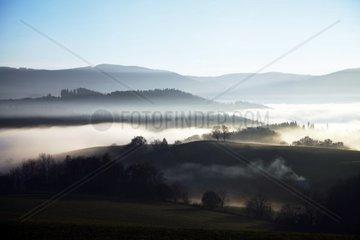 Landschaft bei St.Peter mit Nebel