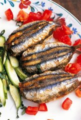 Italy  Liguria  Cinque Terre's traditional anchovies menu: anchovy with tomato  zucchini and basil
