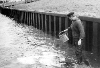Mann giesst Wasser