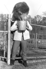 Mann mit einem Kamelkopf