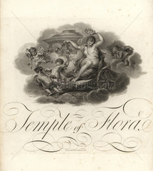 Temple of Flora  title page with vignette of cupids and Flora