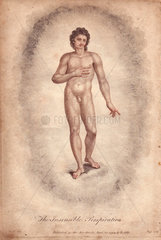 The Insensible Perspiration. Emblematic figure of a naked man within a cloud.