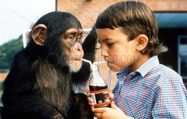Affe und Junge teilen Limonade