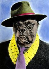 Boxer mit Hut