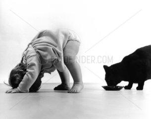 Baby beobachtet Katze durch die Beine