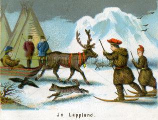 Das Leben in Lappland  1860