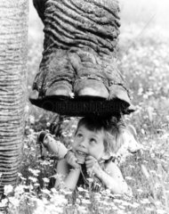 Elefantenfuss ueber Kind