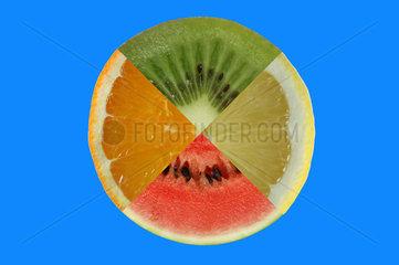Kreis aus vier verschiedenen Suedfruechten Apfelsine Kiwi Zitrone Melone