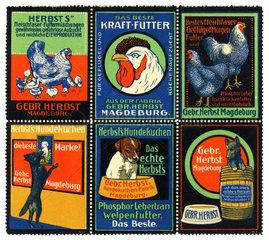 Werbung fuer Tierfutter  1913