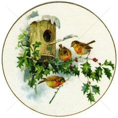 Vogelhaeuschen im Winter  Illustration  1900