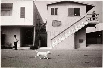 California  1971
