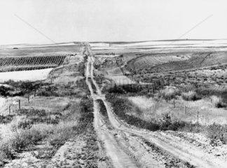 Wheat and corn fields  Montana  USA  August 1941.
