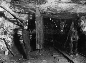 Trapper boy in a Pennsylvania coal mine  USA  c 1910.