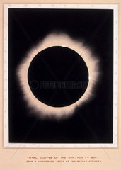 Eclipse of the Sun  7 August 1869.