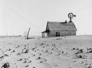 Dustbowl farm  Coldwater District  Texas  June 1938.