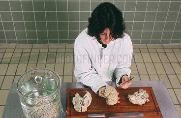 Pathologie zur klinischen Obduktion