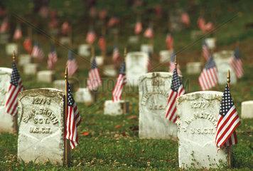 Friedhof mit US-Flaggen