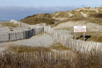 Wood Ganivelles to protect the sand dunes - France
