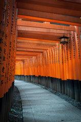 Alley Torii Fushimi Inari Taisha Shrine - Japan