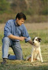 Homme donnant un ordre à un chien bâtard