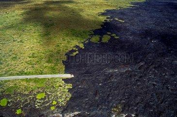 Route cut by a lava flow Kauai Island Hawaii