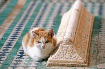 Marrakech  tombeau des Saadiens