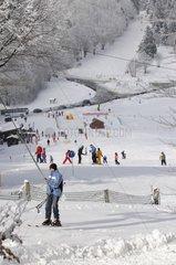 Alpine ski slopes of the Gentian Ballon d'Alsace