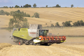 Wheat harvesting in summer - GB