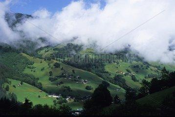 Scattered white above green valleys Chablis France
