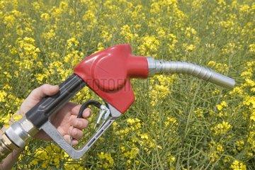 Symbolic image of Colza-based biofuel