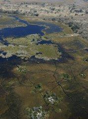 Front of the flood in the Okavango Delta Botswana