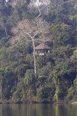 Nature tourisme lakeside Sandoval Amazon Peru