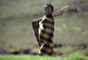 Amhara shepherd in Ethiopia mountain