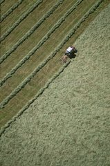Mechanized haying seen from the sky